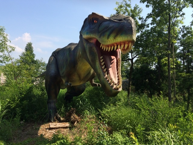 【古生物学】ディプロドクス科恐竜のこれまでで最も小さな頭蓋骨から竜脚類恐竜の生活を解明する手掛かりが見つかる
